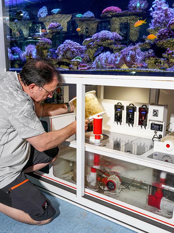 Service am Aquarium